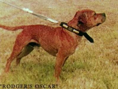 Rodger`s Oscar